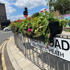 Redbridge Council is giving away 50,000 spring-flowering bulbs in an effort to make the borough greener and more beautiful