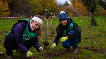 UK Power Networks has partnered with Trees for Cities for the planting scheme