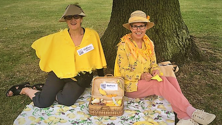 Canary Craftivists in Letchworth's Broadway Gardens