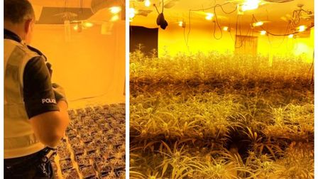 The scene that confronted police in Wisbech after a routine check by a plumber came across a drugs factory.