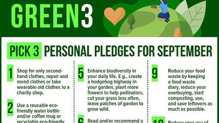 What pledges you will you and your family make