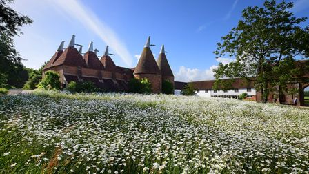 Beautiful wildflowers and Oast Houses at Sissinghurst Castle Gardens