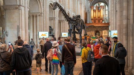Visitors enjoying Dippy on Tour at Norwich Cathedral.