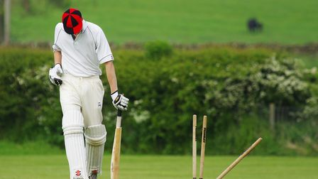Councillors haveawarded £3,000 to Branscombe Ravens Cricket Club
