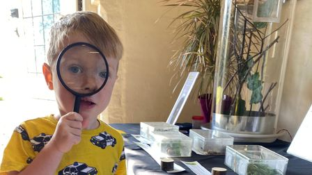 Max uses a magnifying glass at Rothamstedto investigate creepy crawlies which attack crops.