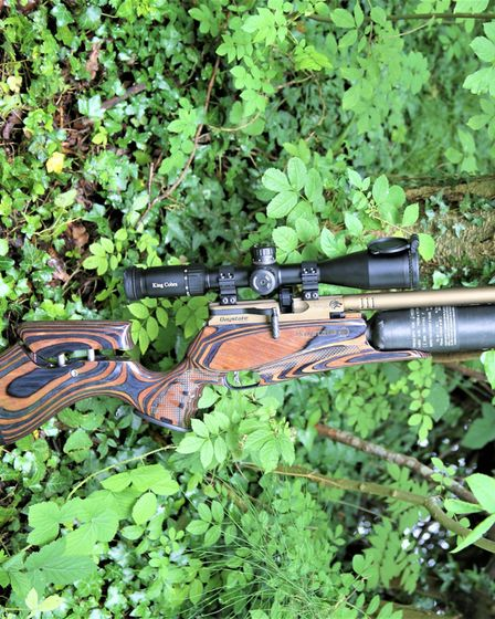 The Daystate Red Wolf Heritage LE air rifle, propped against a tree in woodland