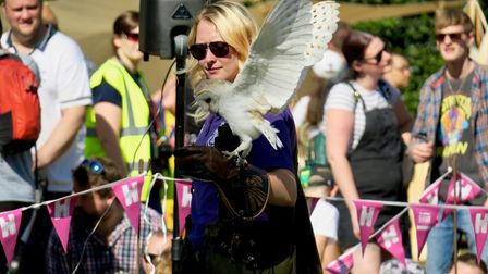 There will be birds of prey atthe Hertford Castle Heritage Day.