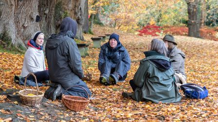 A group of women sat in a circle in a woodland in autumn.