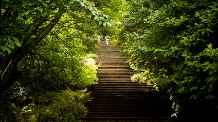 A man walking up a long flight of stone steps in woodland.