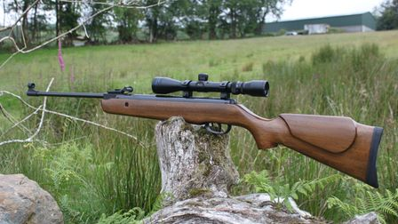 The second-hand BAM XS-B19 break-barrel air rifle balanced on a tree trunk in a field