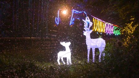 As well as the lights n the train there will be dioramas to enjoy en route