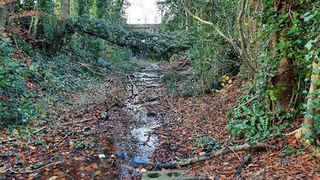 he former railway line looking towards the Cannard_'s Grave bridge in Shepton Mallet.