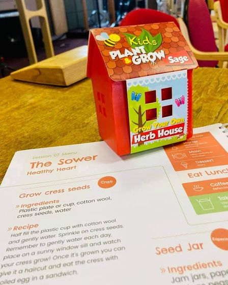A plant and grow kit with instructions on how to grow cress, Saffron Walden, Essex