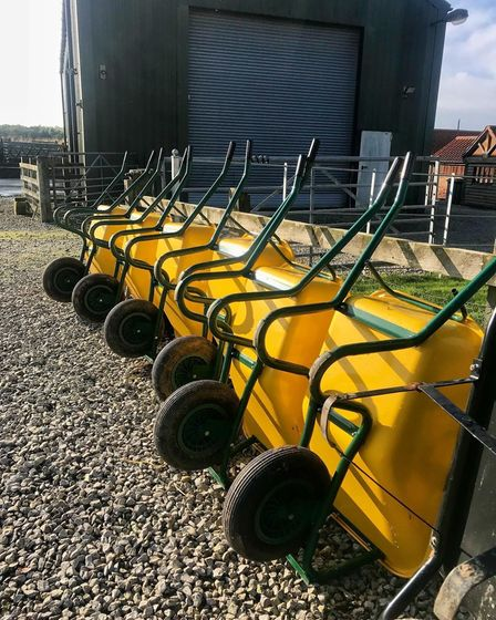 yellow wheelbarrows lined up against a fence