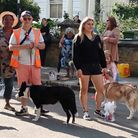 Dogs prepare to parade at Islington Street Association's launch party