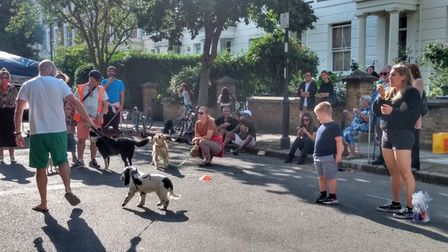 The dog parade at Islington Street Association's launch party
