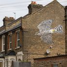 A mural of a sparrow hawk painted by eco-artist ATM on Daubeney Road as part of the 10xGreener project.
