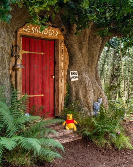 A Winnie the Pooh inspired house in Ashdown Forest, the original Hundred Acre Wood, is available to