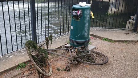 A bike is pulled out of the river on the Riverside Walk in Norwich
