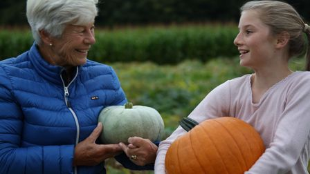 Pick your own pumpkin at The Pop-Up Farm.