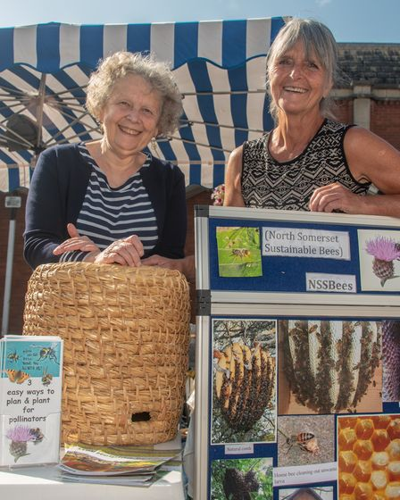 Hilary Neal and Sal Pearson from North Somerset Sustainable Bees at Clevedon's Great Big Green Marke