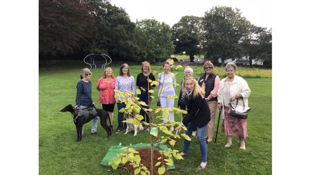 Group of women planting a centenary tree