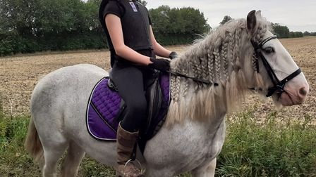 This horse was stolen from a farm in Cambridgeshire.