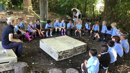 St Francis Primary school forest school