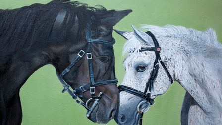 Digswell Place Group Riding for the Disabled Association art and photography competition.