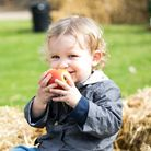 A child smiling, eating an apple sitting on a hay bale, Audley End House and Gardens, Essex