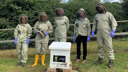 Staff at Jimmy's Farm geared up to welcome the bees