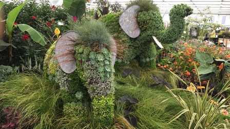 The elephant display at Chelsea Garden show