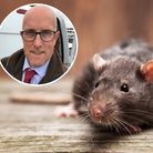Rat-catcherAndrewDellbridge (inset) on how the rodents are sneaking into city homes