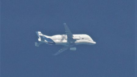 A rare Airbus Beluga XL has been spotted flying over Norfolk.
