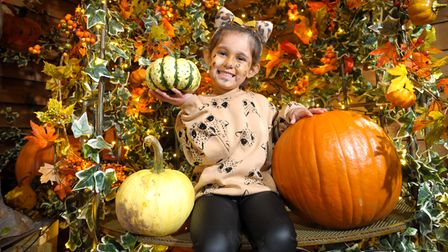 Visit Willows Activity Farm'svisit Gourds Grotto.