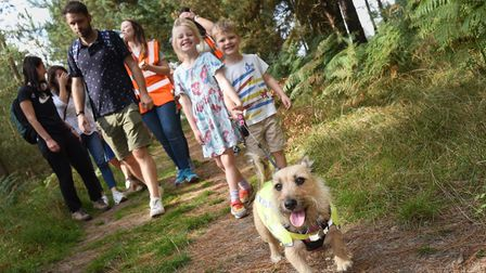 FutureYou Cambridge organised the 'Woof in the Woods'dog walk through Thetford Forest in aid of Blue Cross