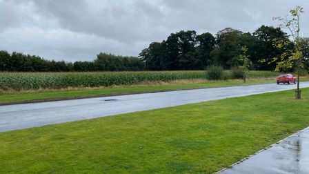 The corn field directly opposite the houses which were targeted in Sprowston