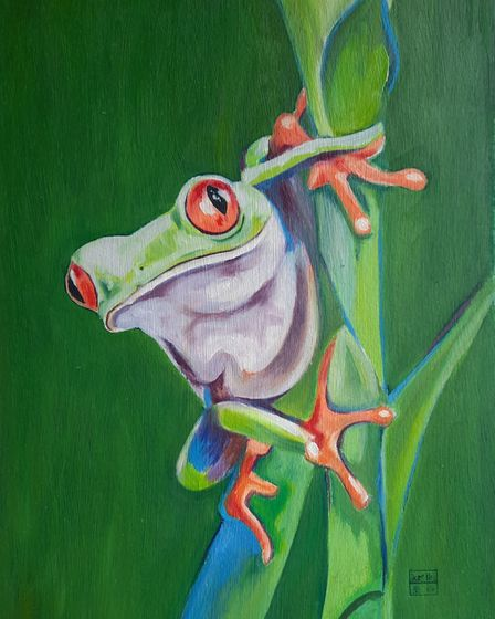 Red-eyed Tree Frog by Mei Dong in Royston Arts Society's autumn exhibition