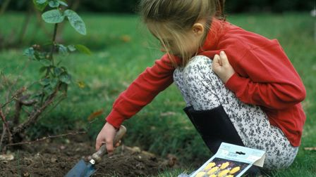 Kids will love to get involved with a spot of bulb planting.