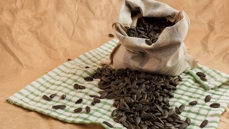 Seed pouches can be made out of a range of different materials.