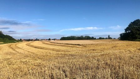 Wide open spaces in Faversham