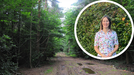 Newly elected Broadland district councillor is worried about the loss of trees throughdevelopment plans in Thorpe