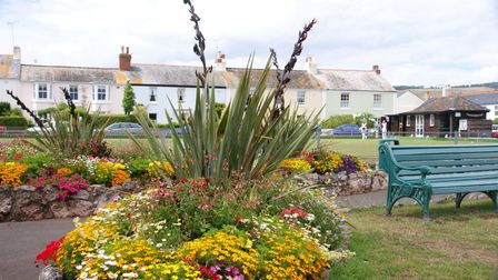Flower beds by Shaldon green