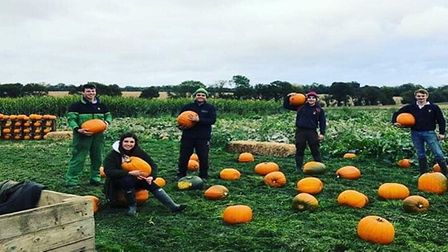 Pumpkin pickers show their selection at Hatters Farm