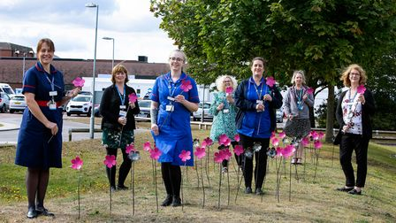 Ipswich Hospital staff who care for patients with breast cancer show off some of the 1,000 strong display.
