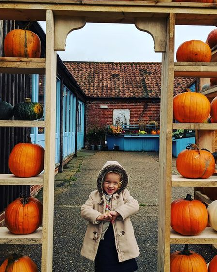 Pumpkins on offer at White House Farm