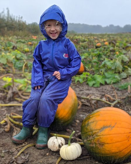 Pack your wellies for pumpkin picking!