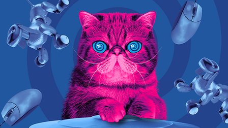 HypnoCat campaign launched