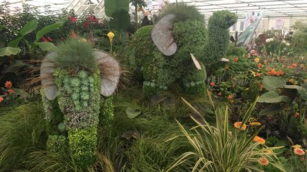 Two elephant-themed grass and floral displays in a greenhouse