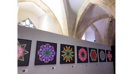 Botanical Opticals photography exhibition at The Crypt Gallery at Norwich Cathedral.